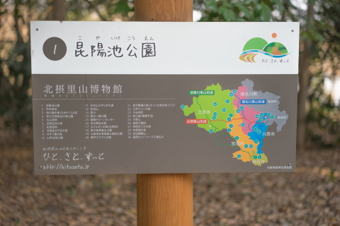 #1 昆陽池公園.JPG