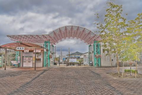 #1 草津市水生植物園みずの森.JPG
