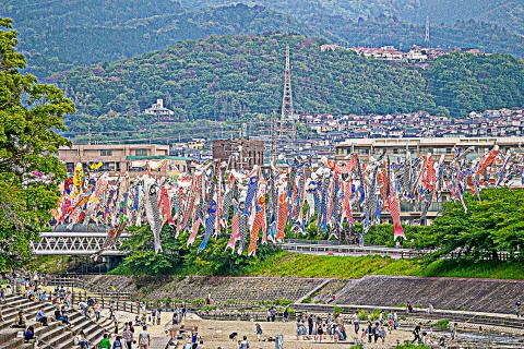 #1 芥川桜堤公園.JPG